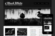 zBlackWhite Free Html5 Website Template