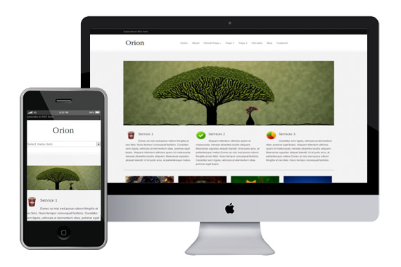 orion responsive wordpress theme