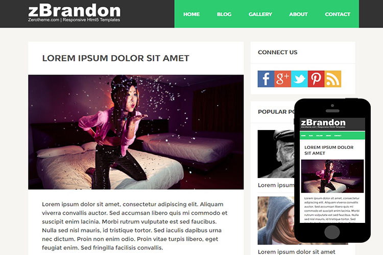 zBrandon Free Html5 Website Template