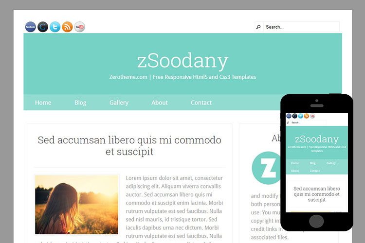 zSoondany Free Html5 Website Template