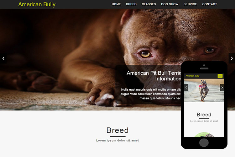 American-Bully-Free-Bootstrap-Themes-Responsive-Html5-Template-2