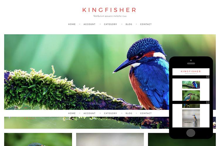 zKingfisher-Free-Bootstrap-Theme