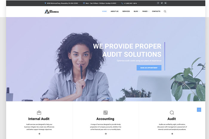 proBusiness - Elegant Audit Company Multipage HTML Website Template