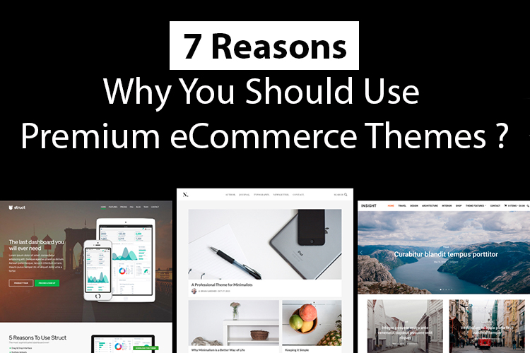 why you should use premium ecommerce themes